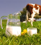 Au bon lait de ferme